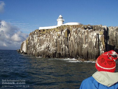 A boat trip to the Farne Islands