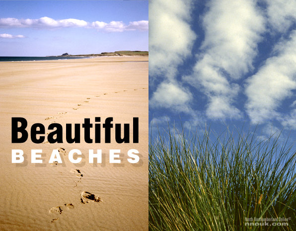 Beaches - title and dunes