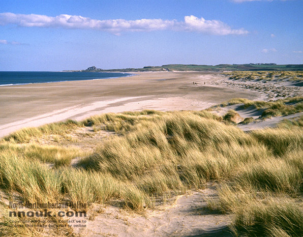 The beach at Ross Back Sands, looking towards Budle Bay and Bamburgh castle