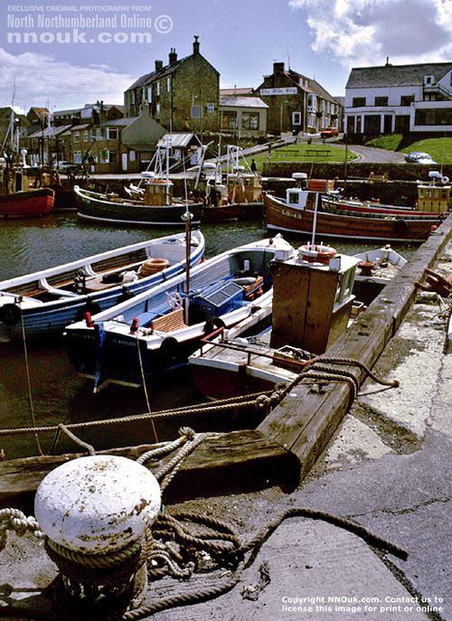 Seahouses harbour with boats, Northumberland